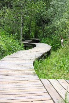 Free Wooden Boardwalk Through The Marsh Stock Photos - 15474923