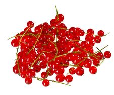 Free Red Currant Stock Photos - 15474993