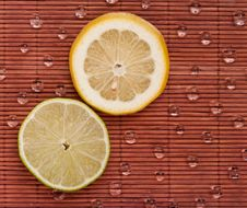 Free Citrus Slices Royalty Free Stock Image - 15475736