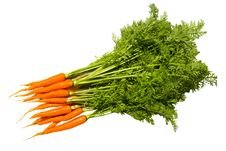 Free Fresh Carrot Fruits With Green Leaves. Stock Photos - 15475753
