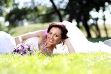 Free Beautiful Bride Stock Photos - 15478303