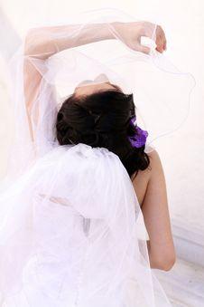Free Wedding Royalty Free Stock Photos - 15478338
