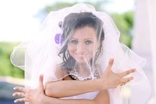 Free Wedding Stock Photos - 15478383