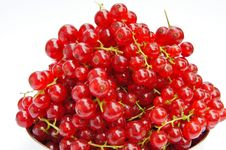 Free Fresh Redcurrants Stock Photos - 15478653