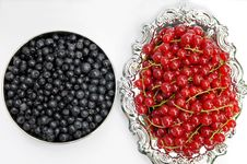 Free Fresh Redcurrant And Blueberries Stock Images - 15478754