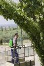 Free Watering Grapes Royalty Free Stock Image - 15482236