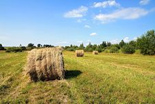 Free Hay In Stack Royalty Free Stock Images - 15485729