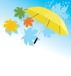 Yellow Umbrella And Maple Leaves Stock Photo