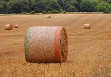 Free Circular Bales Of Hay In An English Meadow Stock Photography - 15488892