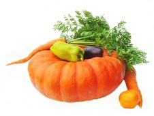 Free Fresh Vegetables . Royalty Free Stock Photo - 15494145
