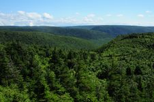 Free Cape Breton Highlands - Nova Scotia Stock Images - 15494164