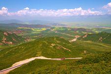 Free China Qinghai Flower Landscape Royalty Free Stock Photos - 15495548