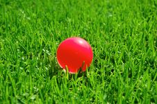 Free Green Grass Pink Ball Stock Image - 15497061