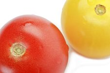 Free Red And Yellow Cocktail Tomatoes Isolated On White Stock Photos - 15499013