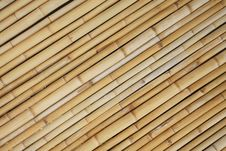 Wall Bamboo Stock Image