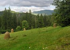 Free Mountainous Green Meadow 3 Royalty Free Stock Photography - 1554587
