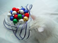 Kitty And Ornaments One Royalty Free Stock Photo
