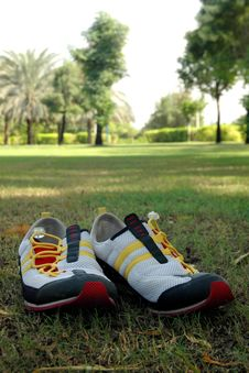 Free Shoes Stock Photo - 1556350