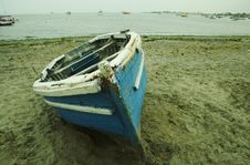 Free Boat On The Coast Royalty Free Stock Photography - 1556547