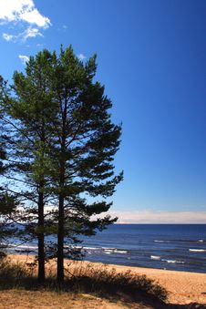 Lake Ladoga. A Beach. Royalty Free Stock Images