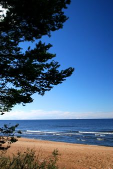 Lake Ladoga. A Beach. Royalty Free Stock Image