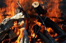 Free Campfire Stock Photos - 1558503