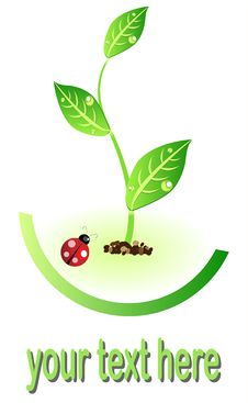 Free Eco Illustration Icon With Plant And Lady Bug Stock Image - 15502751
