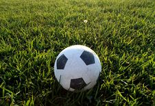 Free Soccerball Stock Photography - 15503132
