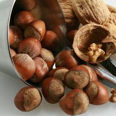 Free Basket Of Walnuts And Hazelnuts Royalty Free Stock Images - 15503459