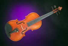 Violin Antique Isolated On Purple Stock Photo