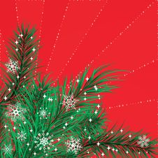 Free Christmas Card With Pine Branches Stock Photos - 15505763