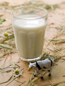 Free Milk Glass Stock Photos - 15506023
