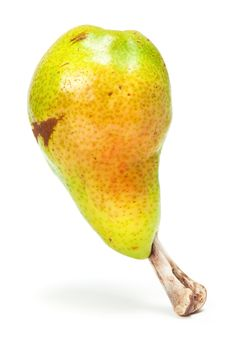 Free Pear With Bone Stock Images - 15506124