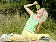 Free Woman At Picnic Stock Photo - 15506930