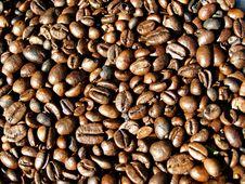 Free Coffee Beans Stock Photo - 15507880