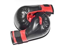 Free Boxers Gloves Isolated Stock Photography - 15508502