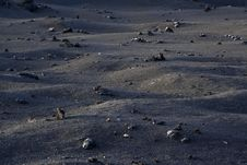 Free Volcanic Landscape In National Park Timanfaya Royalty Free Stock Photography - 15508567