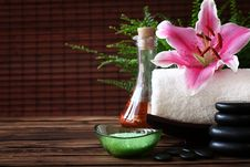 Free Spa Still Life Royalty Free Stock Photos - 15508688
