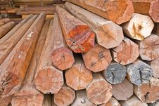Free Wood Shop Royalty Free Stock Images - 15509319