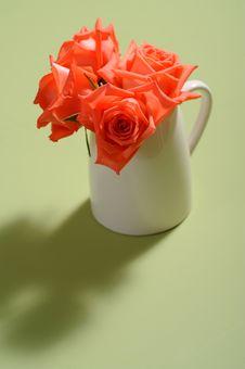 Free Rose Royalty Free Stock Image - 15510526