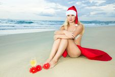 Free Tropical Christmas Stock Image - 15511331
