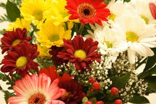 Free Flowers Royalty Free Stock Image - 15511616
