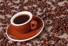 Free Cup Of Coffee Royalty Free Stock Images - 15513209
