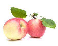 Free Apple Royalty Free Stock Photo - 15515285