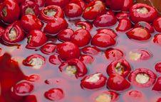 Free Olives Stock Image - 15516471