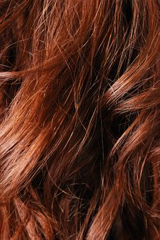 Free Close-up Of Natural Hair Stock Photo - 15517940