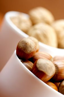 Free Nuts Stock Image - 15518601