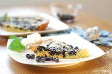 Blackberry Cake Stock Image