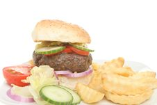 Free Burger And Chips Closeup Stock Images - 15522034