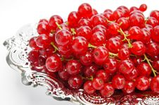 Free Redcurrants On A Silver Platter Stock Photography - 15523702